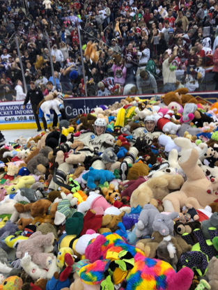 Hershey Bears players lay in a pile of teddy bears on the Giant Center ice on Sunday, December 3. These teddy bears will be donated to a variety of charities for children over the holiday season. (Hershey Bears Twitter)