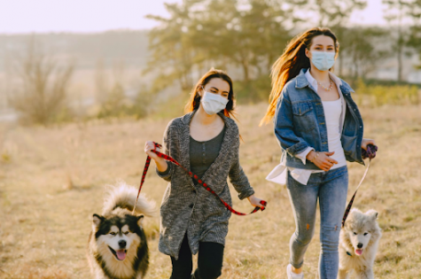 Women in masks take a walk with their dogs. If in the same household, being near each other is okay, but stay away from others. (Gustavo Fring)