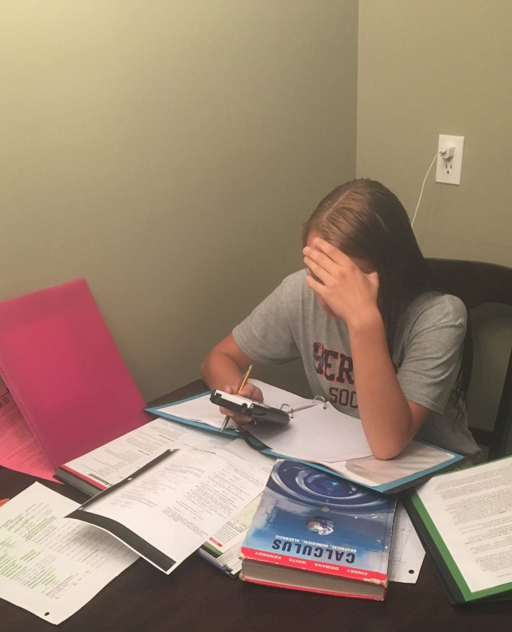 HHS students find homework stressful
