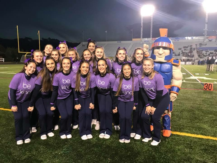 """The Hershey High School Cheerleaders support the WE MATTER Coalition by wearing their """"be kind"""" t-shirts. The cheerleaders wore the purple t-shirts during their last football game of the season on November 3, 2017, to spread awareness about suicide. (WE MATTER founder/Christine Drexler)"""