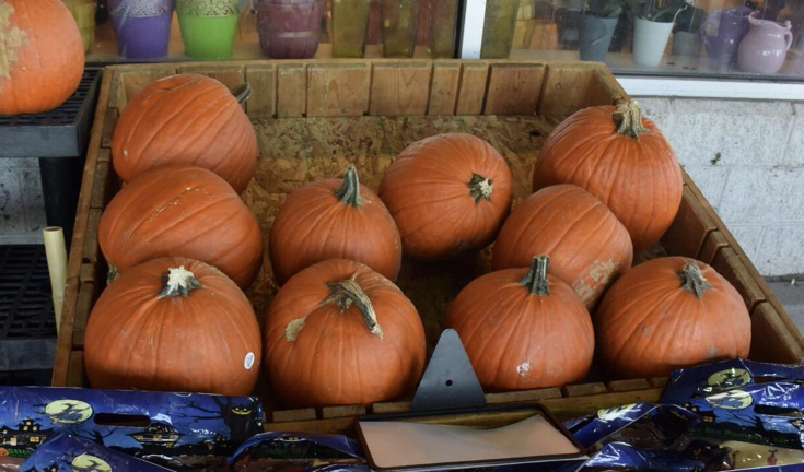 A+classic+thing+to+do+during+the+halloween+season+is+carving+or+painting+pumpkins.+Giant%2C+a+local+grocery+store%2C+is+just+one+of+the+many+places+to+buy+your+pumpkins+for+%244.73.+This+can+double+as+a+fun+activity+and+a+new+decoration+for+your+fall+decor.+%28Broadcaster%2FClare+Canavan%29+