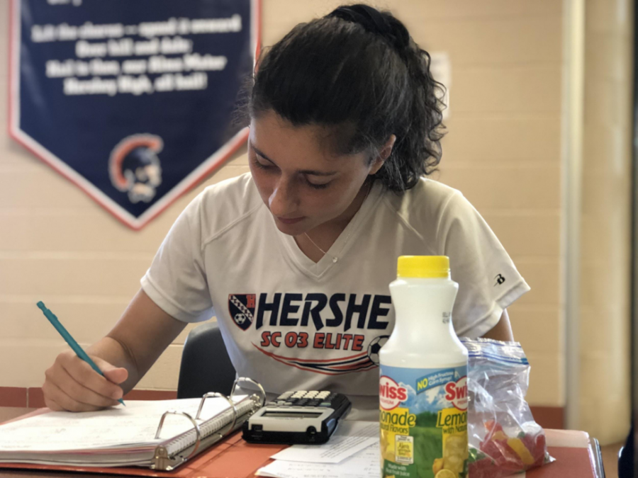 Sophomore Catie Reilly studies math after signing into Flex Time Manager. Reilly thought the wifi was a big contributor to Flex Time Manager not working. (The Broadcaster/Ashlyn Weidman)