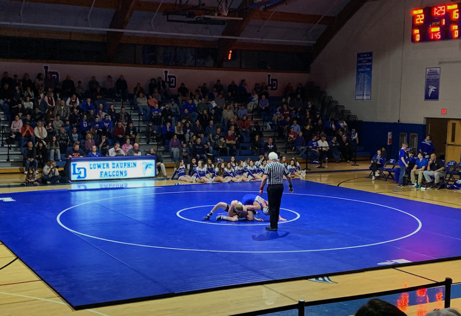 HHS junior Devan Lamb attempts to pin his opponent to the ground in the 145 weight class match. While Lamb won his match, the Trojans were defeated by the Falcons 28-36. (Broadcaster/Kate Clark)
