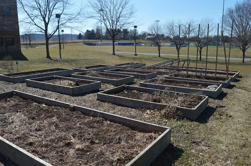 The+garden%2C+located+outside+of+Hershey+High+School%E2%80%99s+cafeteria%2C+will+be+filled+with+many+new+warm+weather+crops.+Ioffreda+says+that+most+of+the+previous+years%E2%80%99+crops+had+success%2C+but+they+are+excited+to+try+many+new+ones+this+upcoming+spring.+%28Broadcaster%2F+Claire+Struck%29b