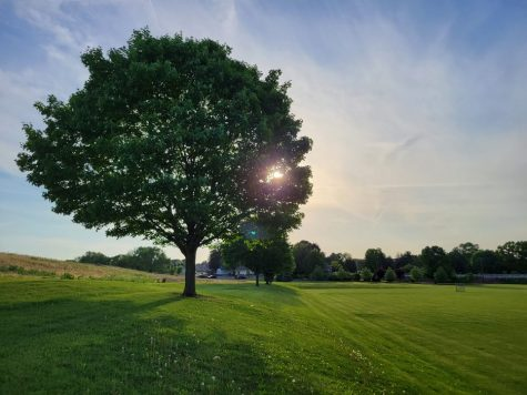 The sun is pictured behind a tree at Palmdale Park on May 20. With the later spring and summer sunsets, public parks are open for longer periods, allowing more time for Hershey residents to enjoy what they have to offer. (Broadcaster/Talon Smith)