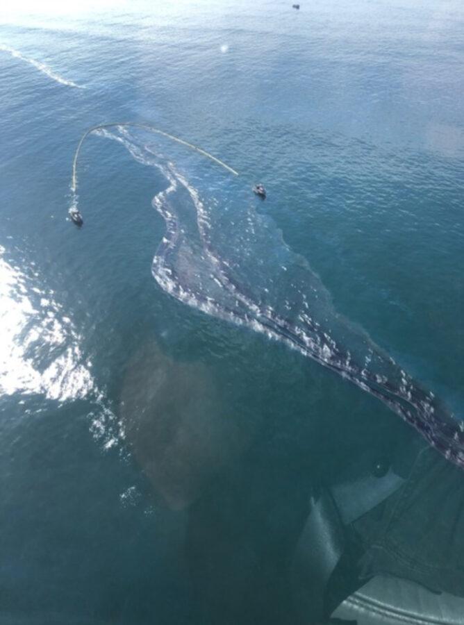 Large+oil+spill+damages+California+beaches%2C+wildlife